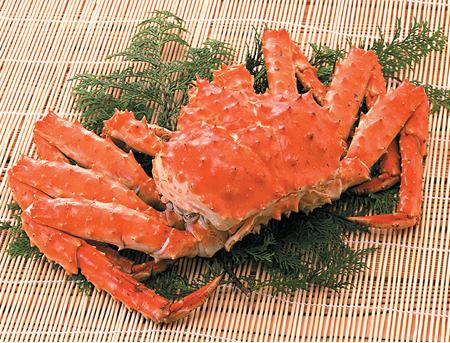 アクセサリー No.81001 24cm 霞KASUMI キッチンハサミ